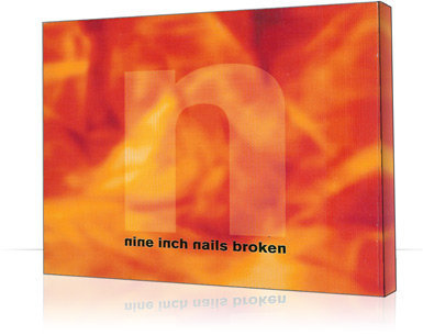 NIN Digipak Broken