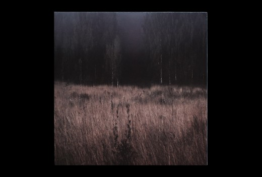 CD Packaging, CD Packaging of the Week: Plant43's Burning Decay