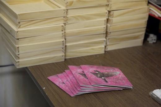 CD Packaging, CD Packaging: Girl Echo Suns Veils- lovesliescrushing