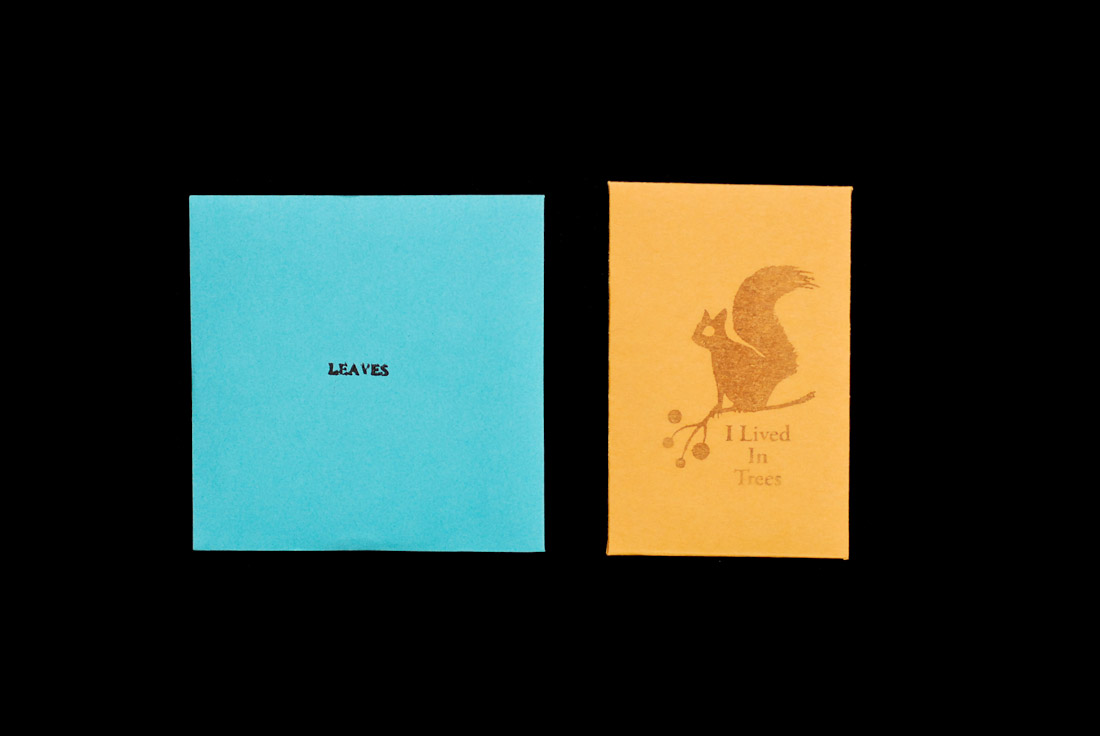 CD Packaging: Mark Fry Leaves book