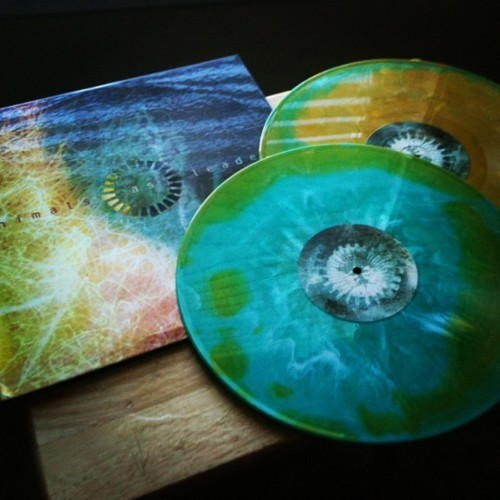 colorful vinyl record