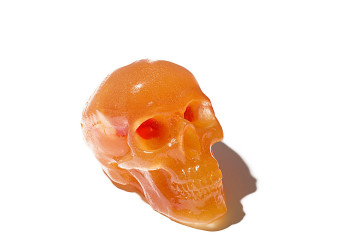 flaming lips gimmick publicity skull