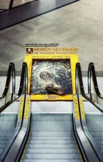 3d crocodile sticker ad