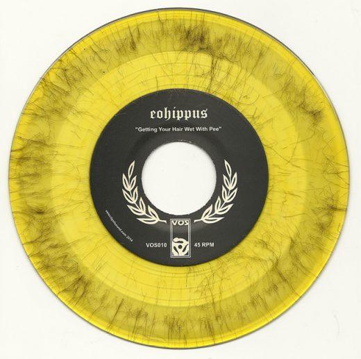 hair-filled-vinyl-record