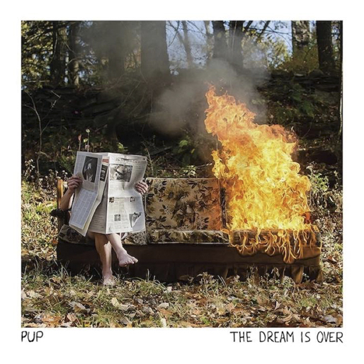 best-albums-2016-pup - the dream is over