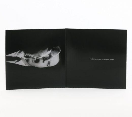 bw vinyl, vinyl packaging, packaging design, vinyl record, Elaborate Black and White Vinyl Packaging Designs