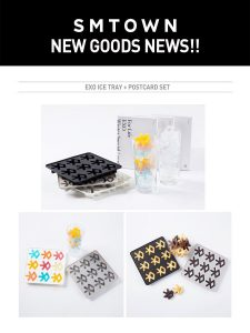 Kpop Merch EXO logo ice cube tray